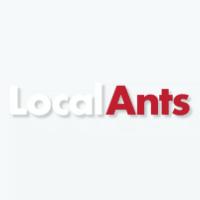 local-ants